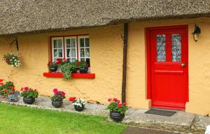 Thatched Cottage - Adare, Ireland