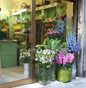 March - Siena flower Shop