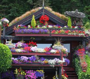 February - Porch Garden