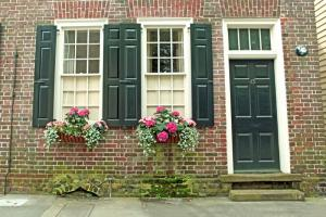 Flower Boxes in Charleston