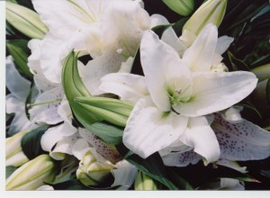 FLOWERS-006