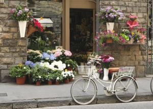 Flower shop Bike