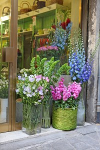 Siena Flower Shop                             Lg & Sm