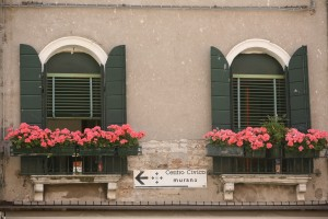 Shuttered Flowerboxes