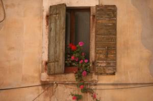 Window & shutters