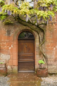 Church Door & Wisteria