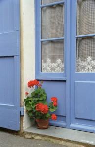French Blue L & sm