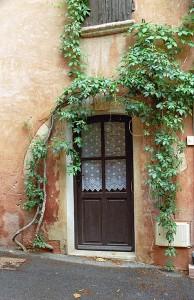 Vines over the Door