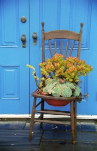 Blue Door with Succulents          Lg & Sm