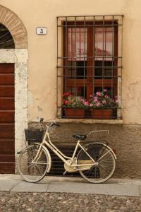 Bike by the Window